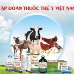Bảng giá thuốc thú y mới nhất 2021 – Top 299 loại Phổ Biến Nhất hiện nay