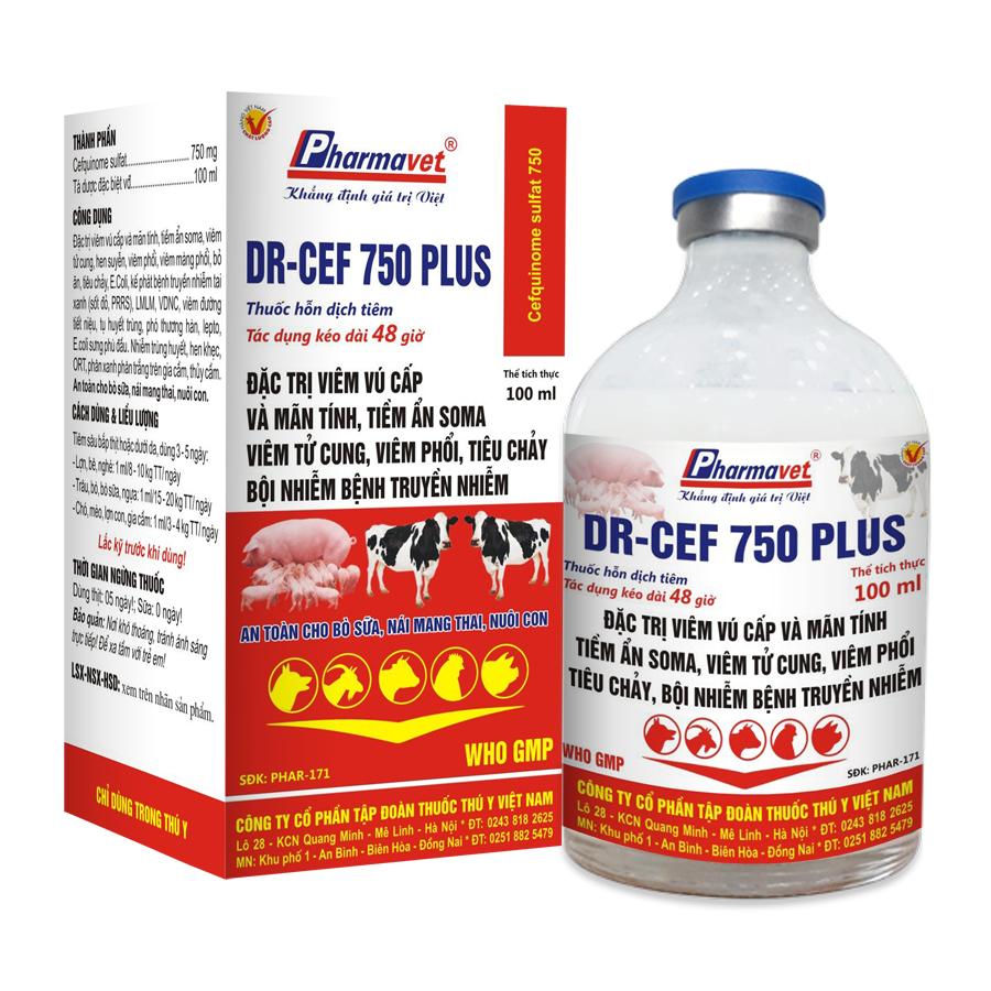 DR – Cef 750 Plus